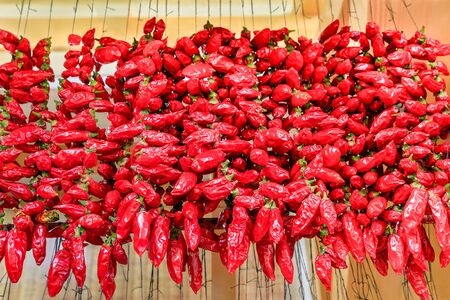 Many red chilli peppers hang at ropes on market in Portugal