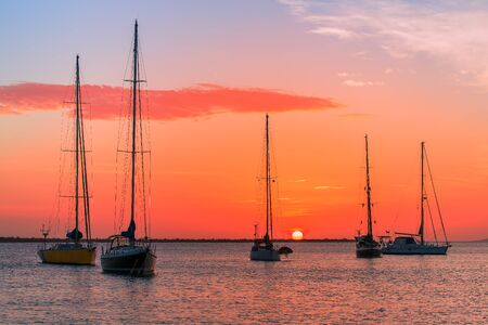 Group of five sailboats together on sea at setting sun