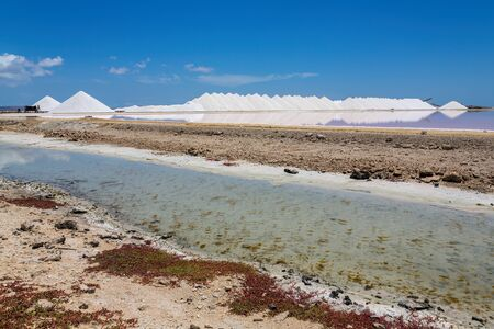 Salt lake with salt mountains on island Bonaire