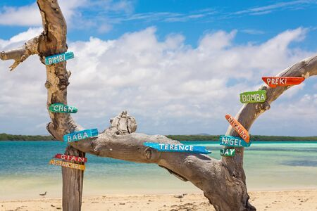 Tree trunk at coast of Bonaire with first names on colorful signs