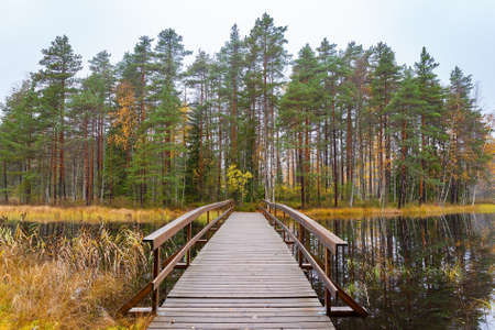 Landscape with wooden bridge to forest in Finland during autumn season Reklamní fotografie