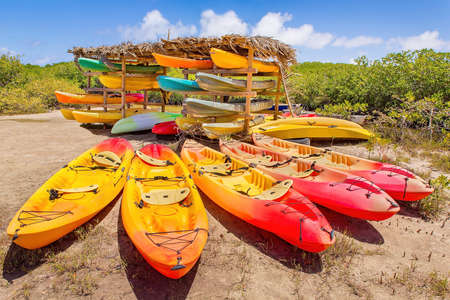 Many colorful kayaks parked in mangrove forest on the island of Bonaire
