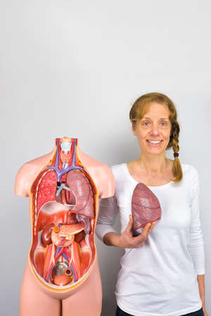 Woman shows lung and human torso with internal organs Standard-Bild
