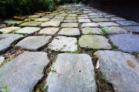clinker: A path made of clinker stones