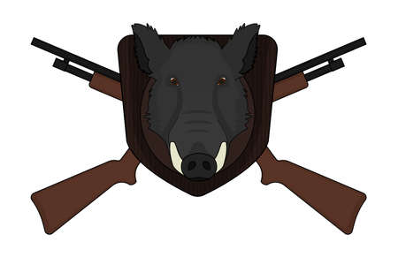 taxidermy: Hunting trophy. Stuffed taxidermy wild boar head with big tusks in wood shield. 2 crossed shotguns. Color illustration isolated on white Illustration