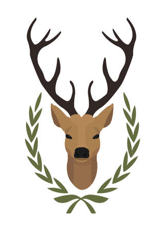 taxidermy: Hunting trophy. Stuffed taxidermy deer head with big antlers in laurel wreath. Color vector illustration isolated on white. No outline