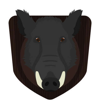 taxidermy: Hunting trophy. Stuffed taxidermy wild boar head with big tusks on wood shield. Color no outline illustration isolated on white