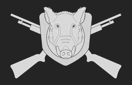 vintage riffle: Hunting trophy. Stuffed taxidermy wild boar head with big tusks in wood shield. 2 crossed shotguns. Blackboard chalk vector illustration isolated on black Illustration