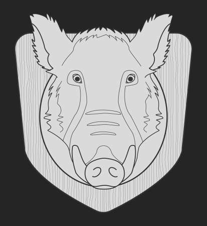 taxidermy: Hunting trophy. Stuffed taxidermy wild boar head with big tusks in wood shield. Chalk monochrome illustration isolated on black