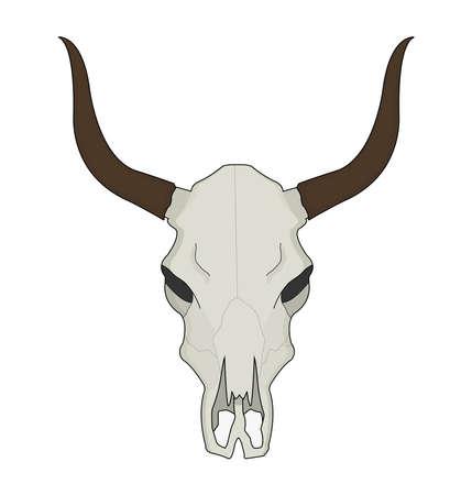 craneo de vaca: Cr�neo de vaca. Salvaje color de la cabeza de cuernos largos ilustraci�n vectorial oeste muertos occidental aislado en blanco