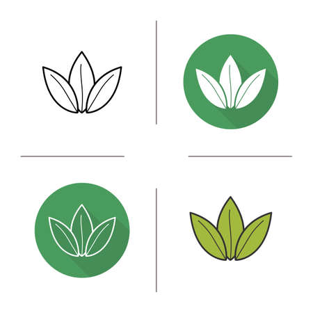 green tea leaf: Green tea leaf flat design, linear and color icons set. Loose tea leaves in different styles. Contour and long shadow logo concepts. Isolated vector illustartions