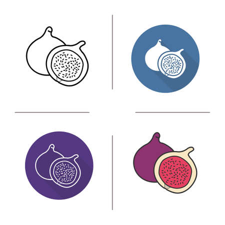 fig: Fig flat design, linear and color icons set. Common fig in different styles. Sliced fig icons. Tropical fruit. Long shadow concept. Fig isolated vector illustrations. Infographic elements Illustration