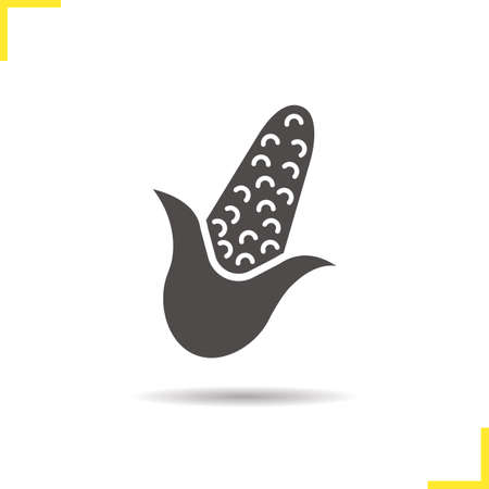 maize plant: Corn icon. Isolated corn illustration. Drop shadow maize icon. Seasonal agricultural grain plant. Corn  concept. Vector maize. Silhouette corn symbol. Maize icon. Isolated maize illustration
