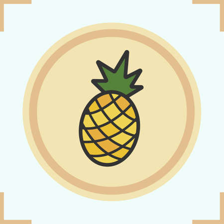 ananas: Pineapple color icon. Ananas vector isolated illustration
