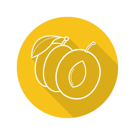 Apricot flat linear long shadow icon. Vector line symbol