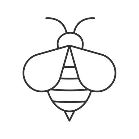 Honey bee linear icon. Wasp thin line illustration. Apiary contour symbol. Vector isolated outline drawing