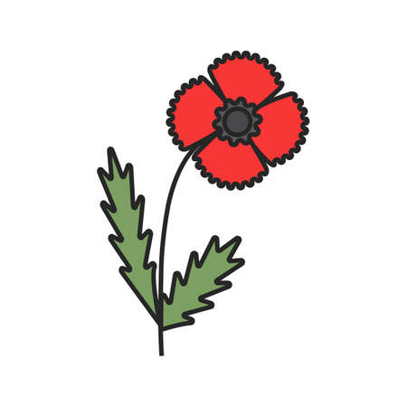 Poppy flower color icon. Isolated vector illustration