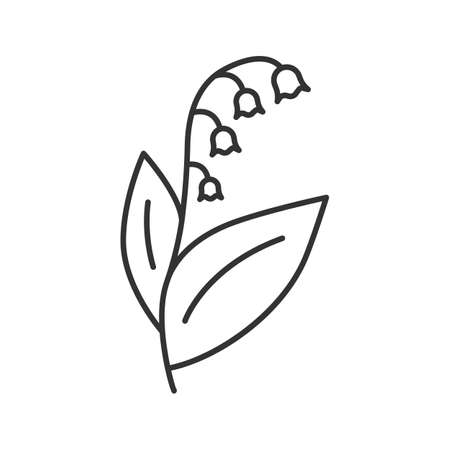Lily of the valley may lily linear icon garden spring flower vector isolated outline drawing lily of the valley may lily linear icon garden spring flower thin line mightylinksfo