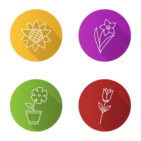 jonquil: Flowers flat linear long shadow icons set. Sunflower head, narcissus, hibiscus, rose. Vector outline illustration