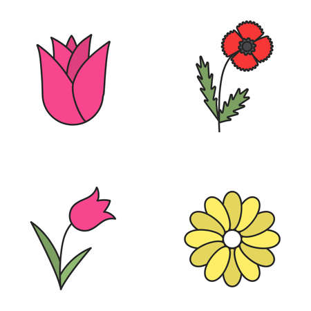 Flowers color icons set. Rosebud, poppy, tulip, chamomile. Isolated vector illustrations
