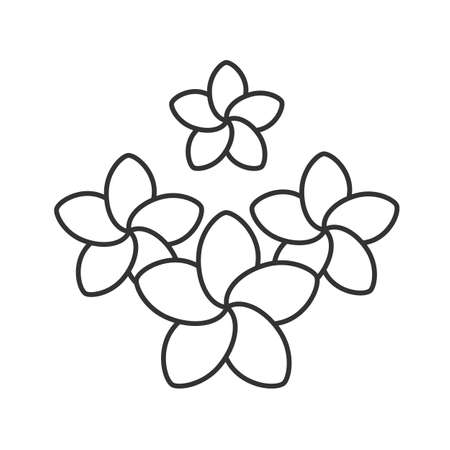 Spa salon plumeria flowers linear icon. Thin line illustration. Aromatherapy contour symbol. Vector isolated outline drawing Illustration