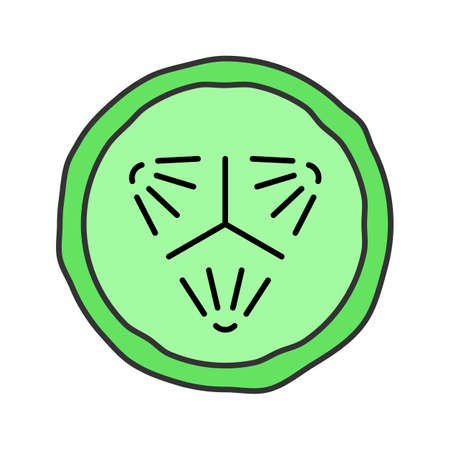 cucumber slice: Cucumber slice color icon. Cucumber facial mask. Isolated vector illustration
