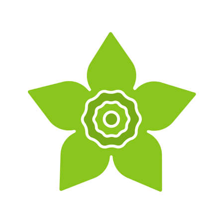 Narcissus head glyph color icon. Daffodil. Silhouette symbol on white background. Negative space. Vector illustration