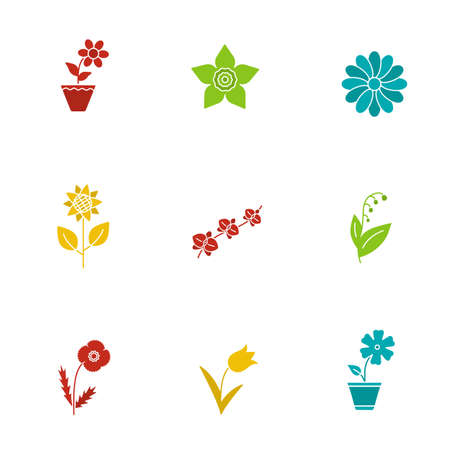 jonquil: Flowers glyph color icon set. Crocus, hibiscus, narcissus head, chamomile, sunflower, orchid, may lily, poppy, tulip. Silhouette symbols on white backgrounds. Negative space. Vector illustrations Illustration