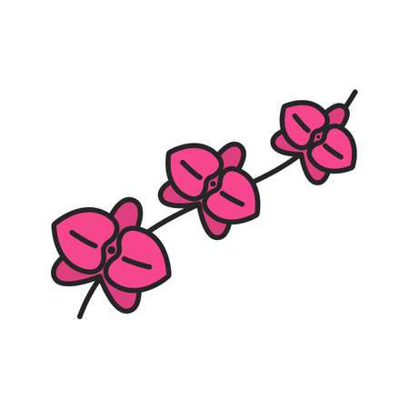 pacification: Orchid branch color icon. Isolated vector illustration