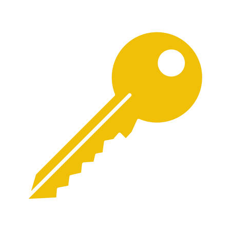 Key glyph color icon. Silhouette symbol on white background. Negative space. Vector illustration