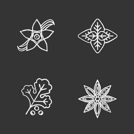 Spices chalk icons set. Anise, basil, vanilla flower, coriander. Isolated vector chalkboard illustrations Иллюстрация