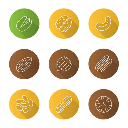 Nuts types flat linear long shadow icons set Illustration