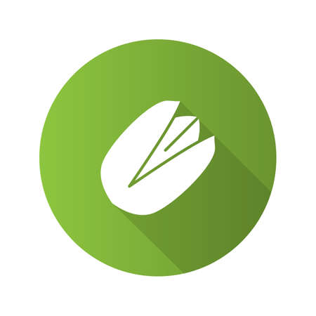 Pistachio flat design icon
