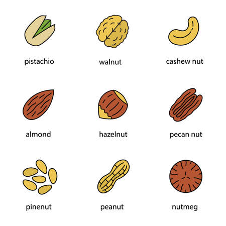Nuts types color icons set Illustration