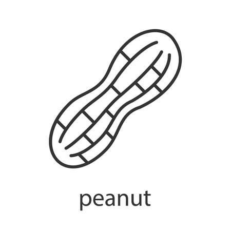 ピーナッツの線形アイコン