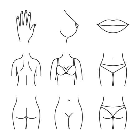 Female body parts linear icons set.