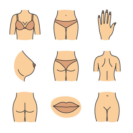 Female body parts color icons set. Woman's hand, breast, lips, back, buttocks, bikini zone. Isolated vector illustrations
