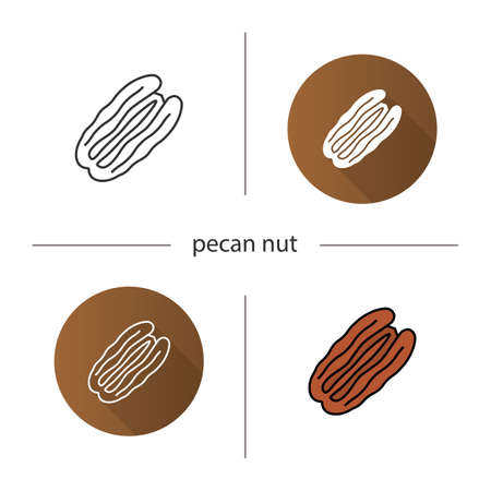 Pecan nut icon. Flat design, linear and color styles. Isolated vector illustrations Illustration