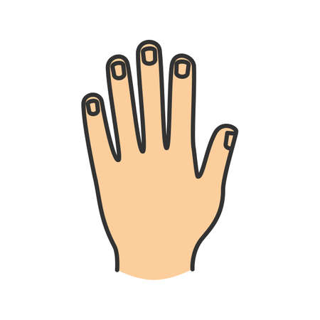 pinky: Mans hand color icon. Isolated vector illustration