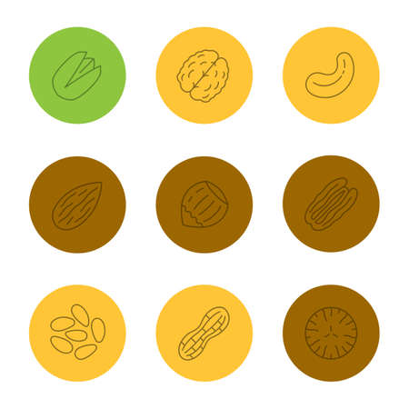 Nuts types linear icons set. Pistachio, walnut, cashew and pecan nuts, almond, hazelnut, pinenuts, peanut, nutmeg. Thin line outline symbols on color circles. Vector illustrations