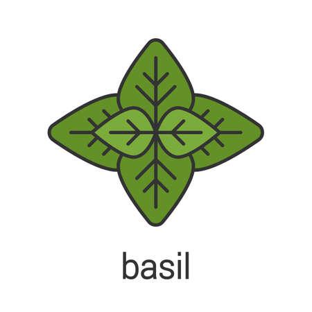 Basil color icon. Isolated vector illustration Иллюстрация