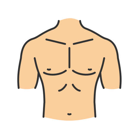 Muscular male chest color icon.