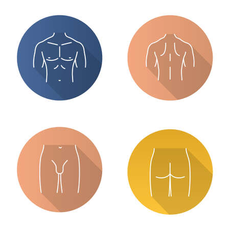 Male body parts flat linear long shadow icons set. Muscular chest, back, groin, butt. Vector outline illustration