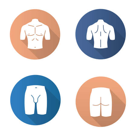 Male body parts flat design long shadow glyph icons set. Muscular chest, back, groin, butt. Vector silhouette illustration