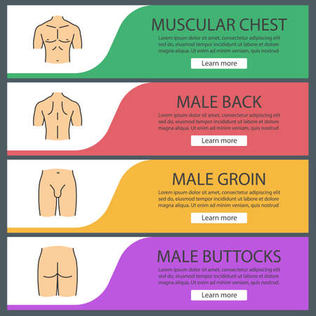 Male body parts web banner templates set. Muscular chest, groin, back, buttocks. Website color menu items. Vector headers design concepts