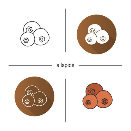 Allspice icon flat design, linear and color styles pimento isolated vector illustrations.