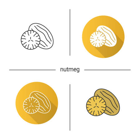 Nutmeg icon. Flat design, linear and color styles. Mace spice. Isolated vector illustrations