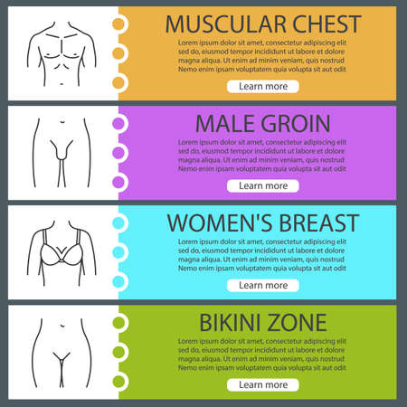 Human body parts web banner templates set. Man's muscular chest, male groin, female and bikini zone. Website color menu items with linear icons. Vector headers design concepts