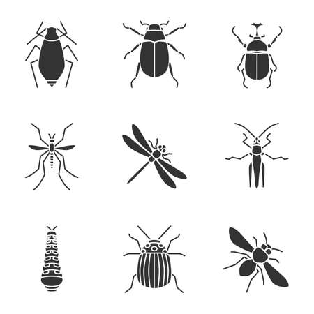Insects glyph icons set  Silhouette symbols Vector isolated illustration