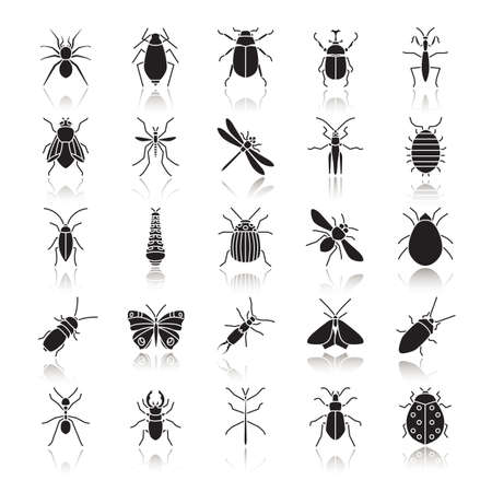 Insects drop shadow black glyph icons set Isolated vector illustrations Illustration